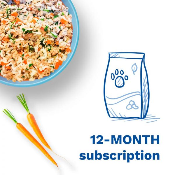 """a graphic that says """"12-month subscription"""""""
