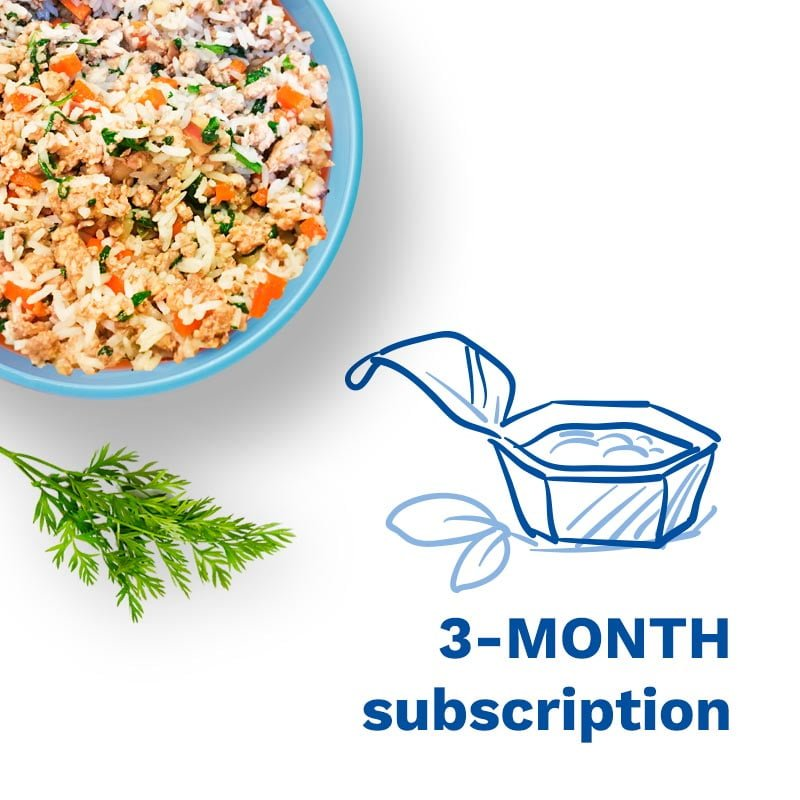 """a graphic that says """"3-month subscription"""""""