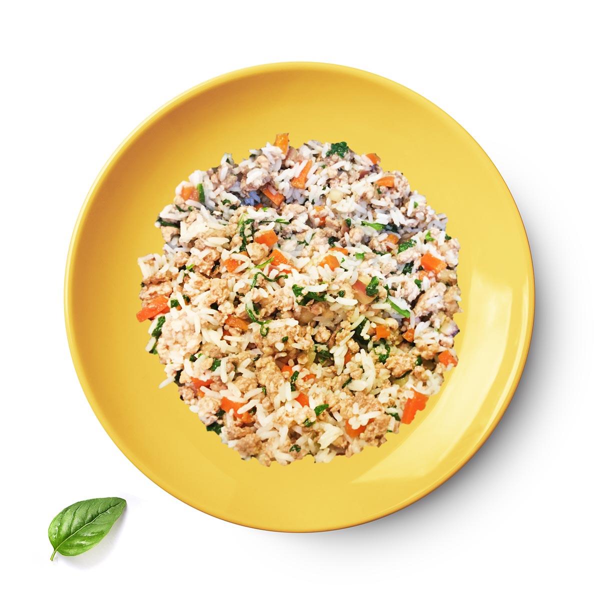 plate_chicken-rice