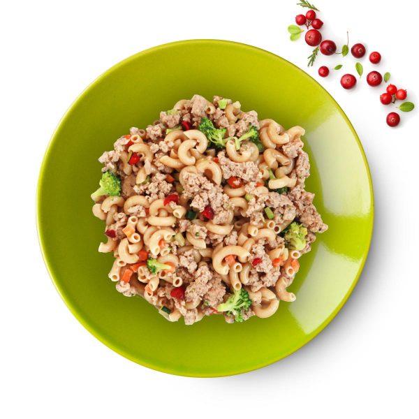 pasta dog food dish